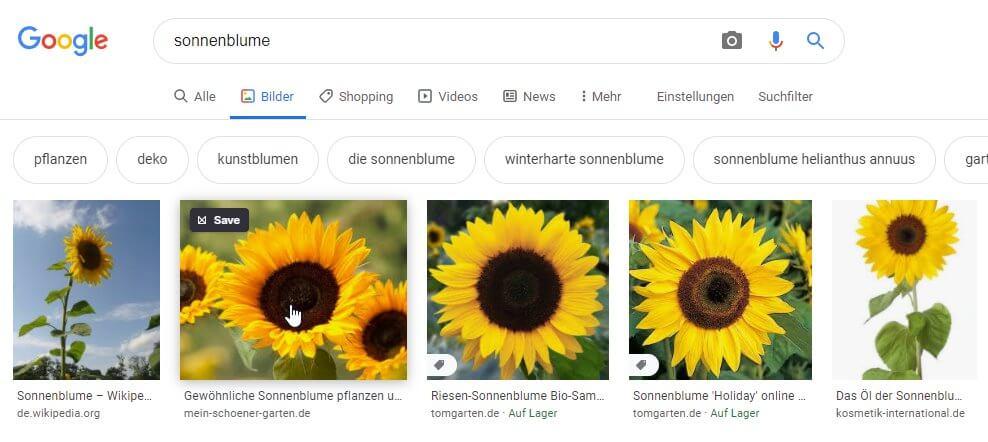 Suchmaschinenoptimierung Bildnamen Optimal